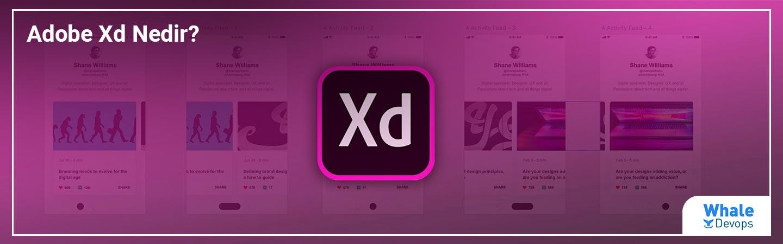 Adobe Xd Nedir